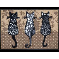 Matte Katzenbande